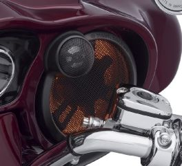 Harley-Davidson® Spectra Glo Stage II Speaker Illumination Kit 68000231