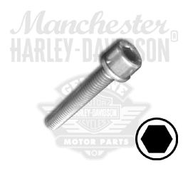 Screw M6 x 1.0 x 40 Hex Socket Head with Washer