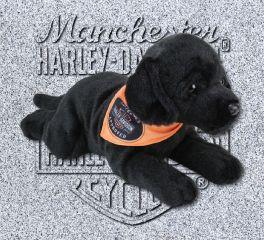 Harley-Davidson® Vengeance Black Lab Stuffed Toy, Kids Preferred™ LLC 20385