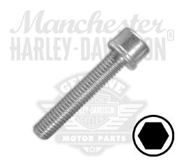Screw M6 x 1.0 x 35 Hex Socket Head with Washer