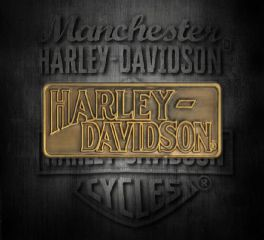 Harley-Davidson® H-D® Antique Gold Pin, Global Products, Inc. P1253263