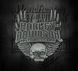 Harley-Davidson® Men's Gothic Winged Skull Pin, Global Products, Inc. P108064