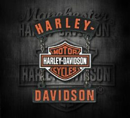 Harley-Davidson® 3D Die Cast H-D® B&S® Rockers Pin with Silver Chains, Global Products, Inc. P283664