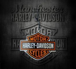Harley-Davidson® Bar & Shield® Christmas Ornament 96998-09V