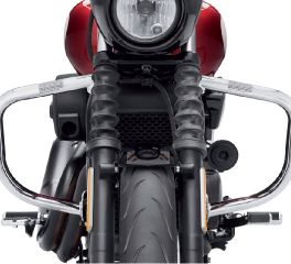 Harley-Davidson® Engine Guard 49000015B