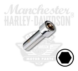 "Smooth Chrome 3/8""-16 X 1-1/4"" UNC Hex Socket Head Screw"