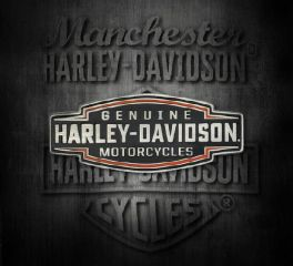 Harley-Davidson® 2D Die Cast Velocity Text Pin, Global Products, Inc. P327644
