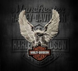 Harley-Davidson® Silver Upwing Eagle Bar & Shield® Pin, Global Products, Inc. P328064