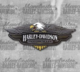Harley-Davidson® Large Vintage Logo Pin, Global Products, Inc. P289064