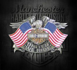 Harley-Davidson® Men's United We Ride Pin, Global Products, Inc. P125844
