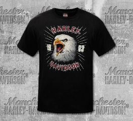 Harley-Davidson® Men's Black Eagle Retro Short Sleeve Tee, RK Stratman Inc. R003318